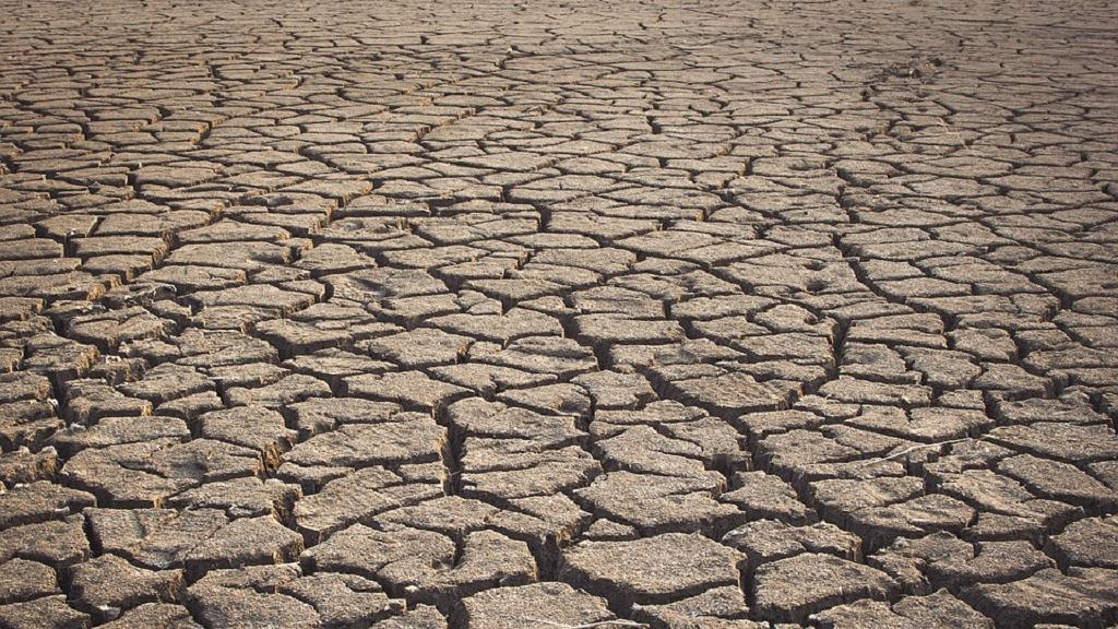 Sécheresse : le cri de détresse des millions de Kényans