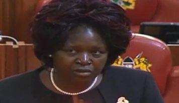 Une députée kenyane veut une loi contre les pets dans les avions