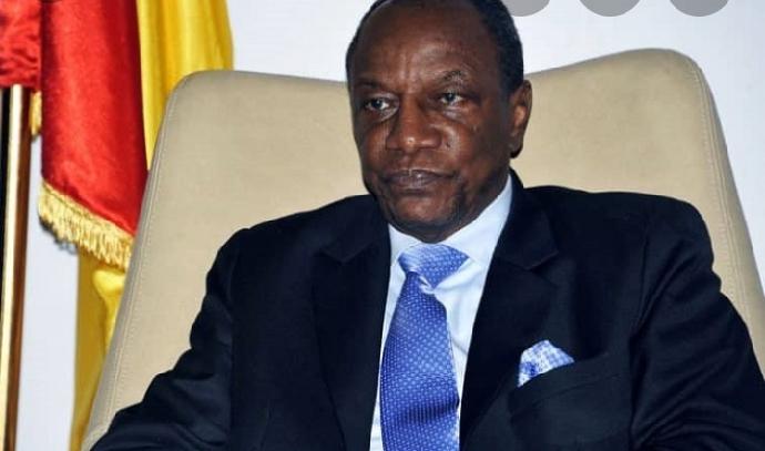Guinée : les électeurs convoqués aux urnes le 16 février 2020 pour renouveler le parlement