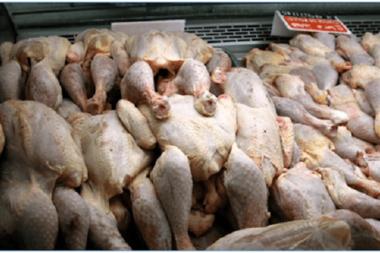Décharges Dar-es-Salam: les poulets pourris sont recyclés pour être vendus pas cher, à l'approche de la fête