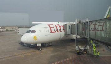 Mines : environ 174 Chinois arrivés mercredi à Conakry