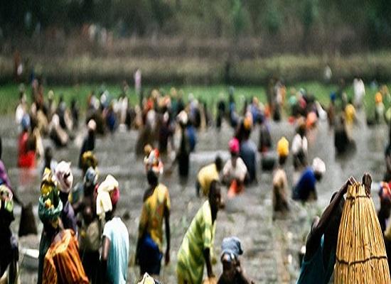 Siguiri : une fête traditionnelle vire à un affrontement sanglant…