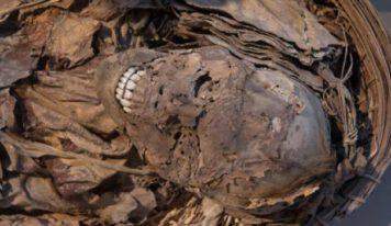 Guinée : deux corps momifiés découverts dans la demeure d'un officier de la douane