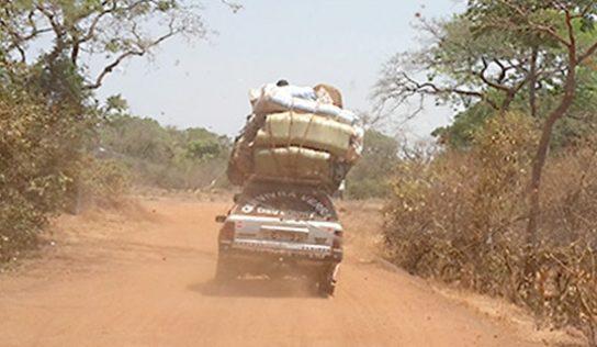 RN Conakry-Mamou : Des coupeurs de route s'entretuent lors d'un braquage armé…