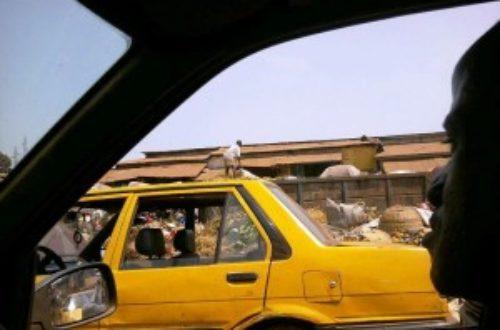 Augmentation du prix du carburant : réactions de quelques citoyens de Conakry